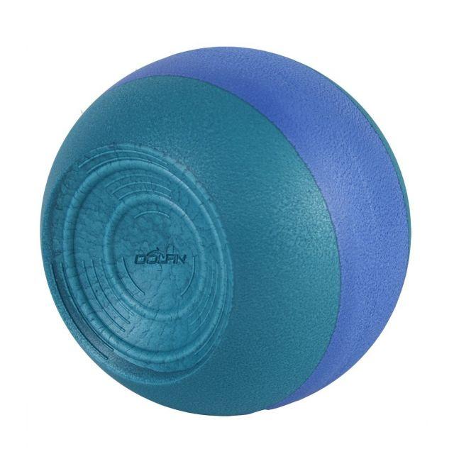 Dolfin Kickball